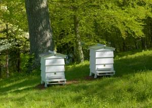 9. Beehouses